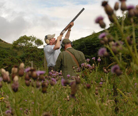Clay Pigeon Scotland
